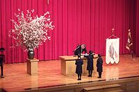 入学式の写真 入学おめでとう