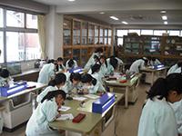 理科の授業(メダカの卵の観察)